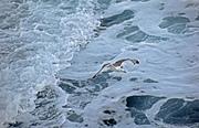 Ενάντια στα κύματα!