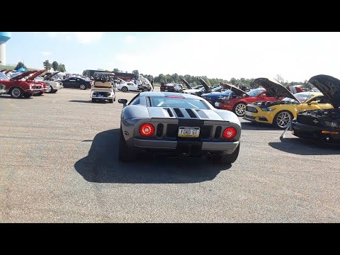 Shelby GT350,GT500,Ford GT40 A Walk Amongst the Wild 2  At Team Shelby East Coast Grand Nationals