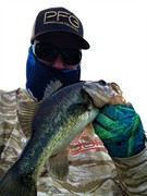 A Few Largemouth In The Mix.........