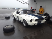 Shelby GT350 2019 Team Shelby East Coast Grand Nationals