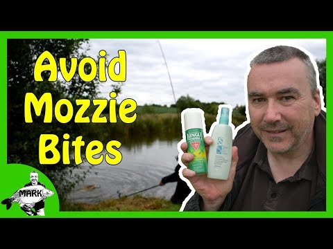 Carp Fishing Tips - How to Avoid Mosquito Bites