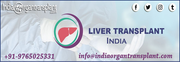 Best Surgeons Top Hospitals India for Liver Transplant