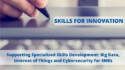 European Conference on Skills Development for Small and Medium-sized Enterprises (SMEs) on Cybersecurity, Big Data and IoT