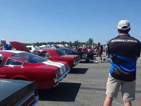 Montage of Shelby GT350,GT500,Ford GT40 Sunbeam Tiger At Team Shelby East Coast Grand Nationals