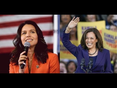 "Tulsi Gabbard Slams Kamala Harris As ""Not Qualified To Be Commander In Chief"""