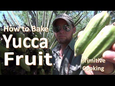 Baking Yucca Fruit (Primitive Cooking)