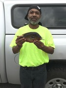 New North Carolina State Record Redbreast...... Alphonso Jackson