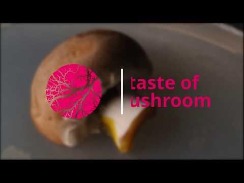 A taste of mushroom