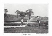 NGM 1919-08 Pic 1