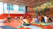 300hr Yoga Teacher Training In India
