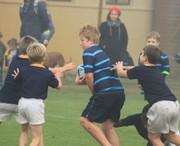 Rugby: vs Rondebosch