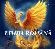 Salonul limbii române