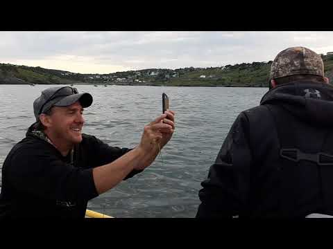 Squid jigging in Newfoundland with Totally Outdoors NL 3