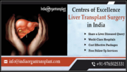 Liver Transplant in India Offers the Best Outcomes in World with Affordability
