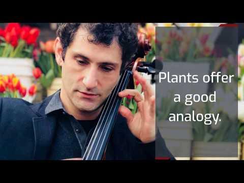 Concert Cellist Dale Henderson Advice Video #1
