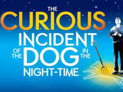 The Curious Incident Of The Dogs In The Nightime