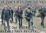 if-they-ban-the-guns-the-2nd-american-revolution-begins-27151221a