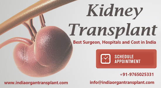 Get freedom from painful Dialysis: Affordable kidney transplant surgery in India