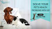 Super Speciality Veterinary Clinic