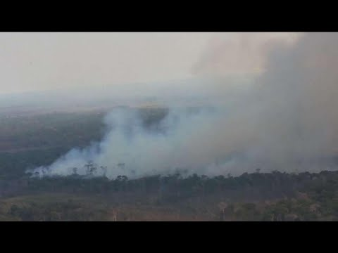 Raging Amazon rainforest fires draw global outrage