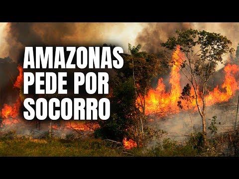 AMAZONAS EM CHAMAS