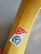 Bananas in the Sustainable Cities of Northern Europe?