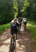 Biking through the Black Forest