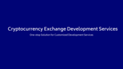 Crypto Infotech offers white label cryptocurrency exchange development services