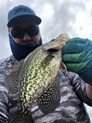 More Nice Black Crappie From The Labor Day Weekend......