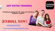 SAP VISTEX Training | Best SAP VISTEX Online Training in India - TT