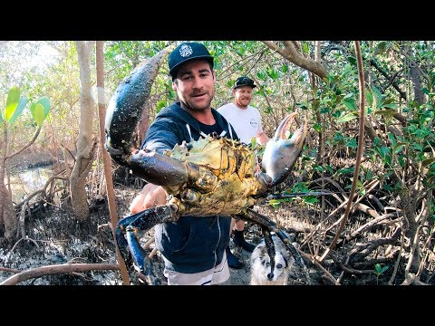 GIANT MUD CRAB Catch And Cook Camp Fire (Rock Knife And Flint) - Ep 90