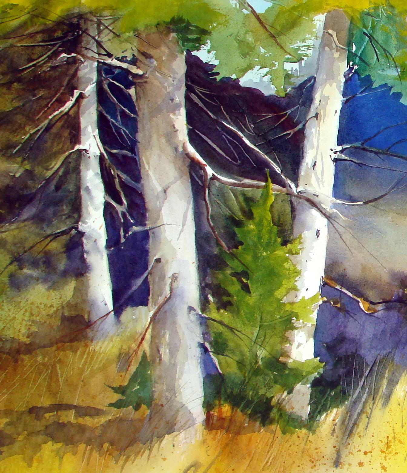 PUP CREEK GALLERY & STUDIO : ARTIST SUE PORTER