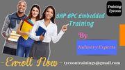 SAP BPC EMBEDDED Training   SAP BPC EMBEDDED Online Training