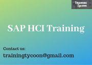 SAP HCI Training