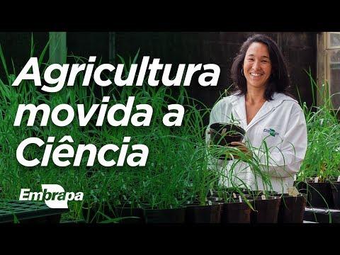 Agricultura movida a Ciência