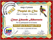 CERTIFCADOS ANTOLOGÍA DE LA IMAGEN Nº 25