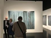 'Pulse' Tacit Galleries 2019