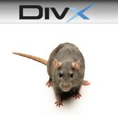 DivX VIDEO