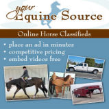 Your Equine Source Network