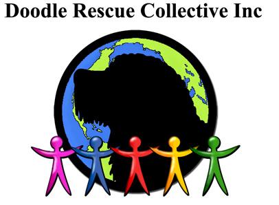 Doodle Rescue Collective Inc