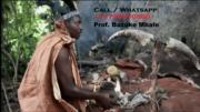 Best Traditional Healer 5