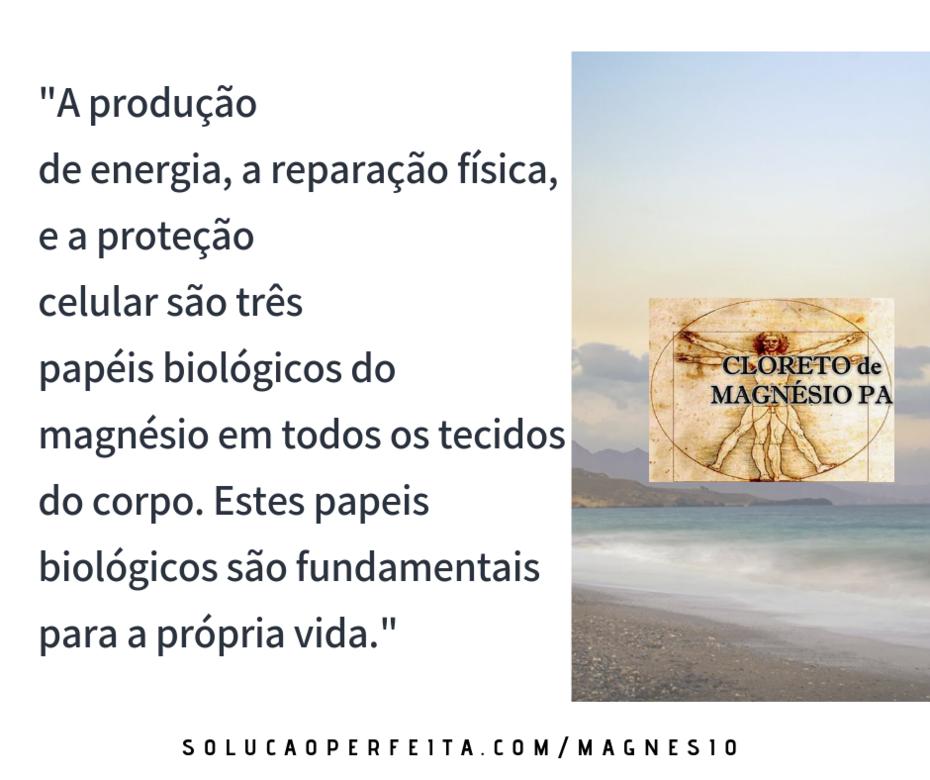 Papéis Biológicos do Magnésio