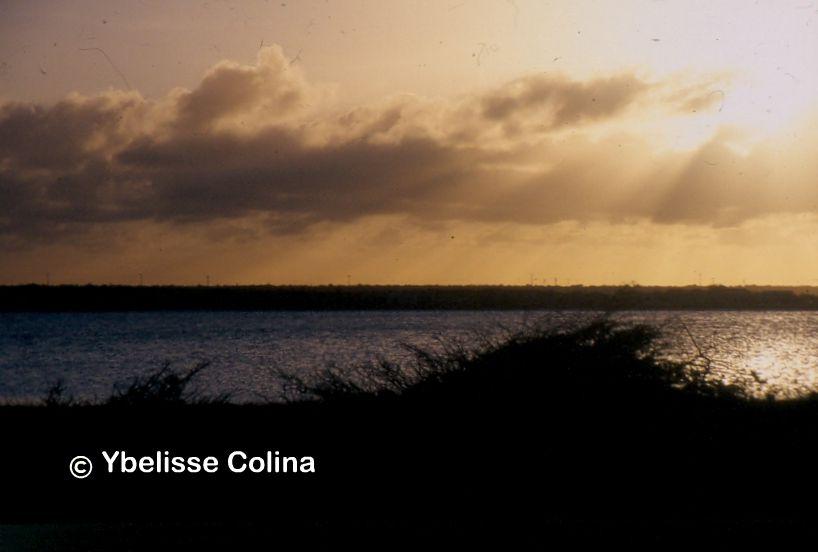Ybelisse Colina.