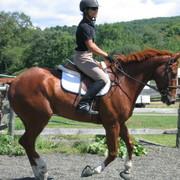 Farah DeJohnette Training