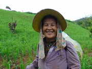 Smiling with the rice field
