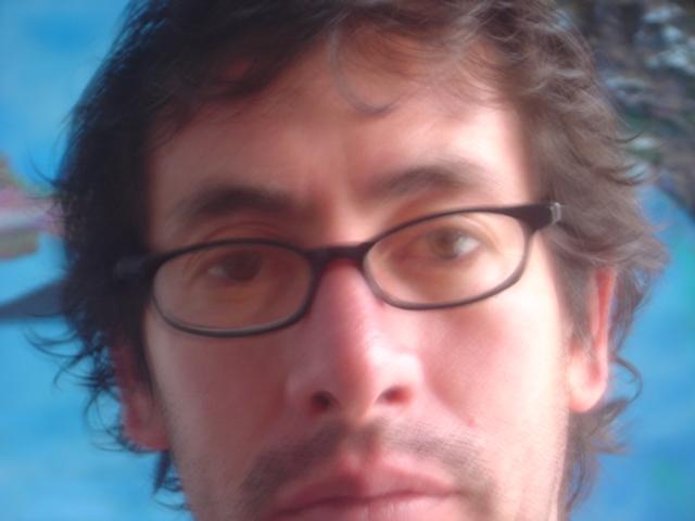 Terry Araujo Pico