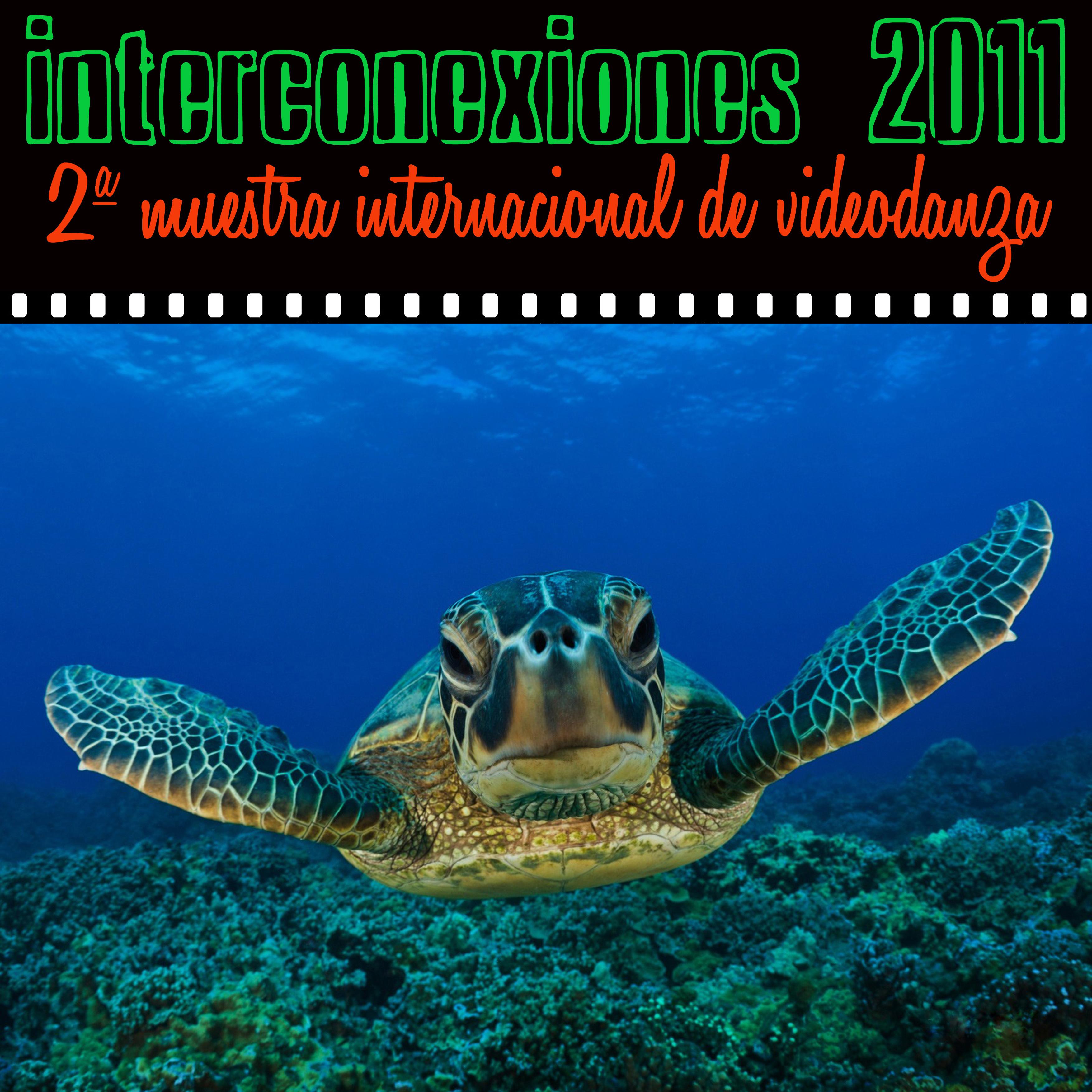 INTERCONEXIONES Videodanza