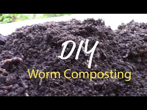 DIY Worm Composting Bin to Rehab Your Garden