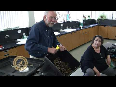 Seeds of Sustainability- Worming Composting Workshop