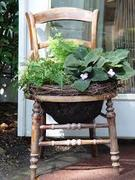 Container gardening in the High Street